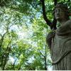 Artemis: Artemis: Goddess of the Hunt