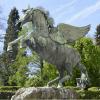 Pegasus Image: Pegasus: The Winged Horse of Greek Mythology