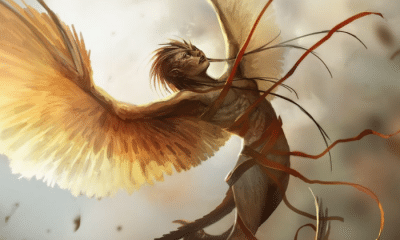 Harpy 1: The Harpy: Destructive Spirits of Greek Mythology