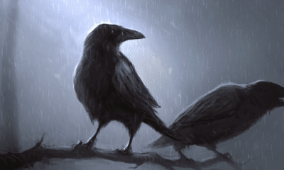 hugin and munin: Hugin and Munin: The Ravens of the Mind