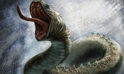 jormungand: Jormungand: The Norse World Serpent