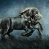 sleiapnir: Sleipnir: Odin's Eight-Legged Horse